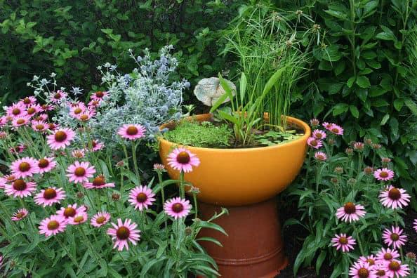Container Water Garden via Aquascape @Aquascape Inc.